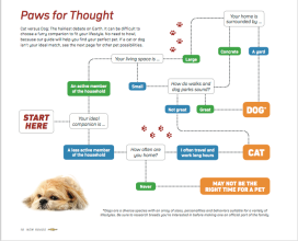 LC_Paws Flowchart I.6 2016
